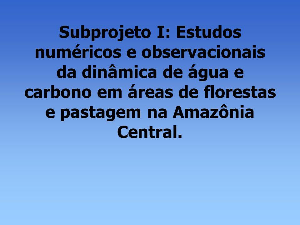 Subprojeto I: Estudos numéricos e observacionais da dinâmica de água e carbono em áreas de florestas e pastagem na Amazônia Central.