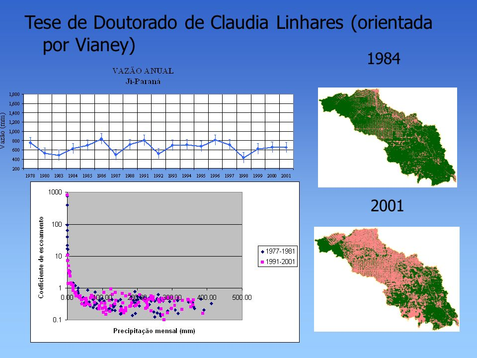 Tese de Doutorado de Claudia Linhares (orientada por Vianey)