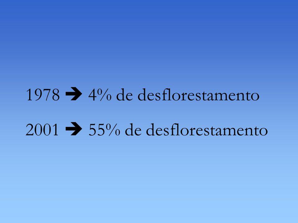 1978  4% de desflorestamento 2001  55% de desflorestamento