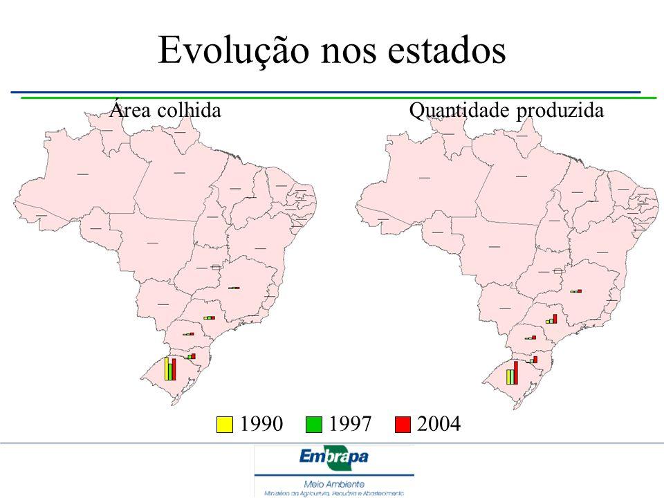 Evolução nos estados Área colhida Quantidade produzida 1990 1997 2004