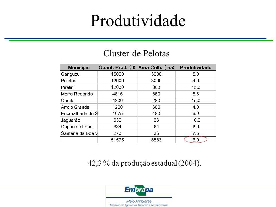 Produtividade Cluster de Pelotas 42,3 % da produção estadual (2004).