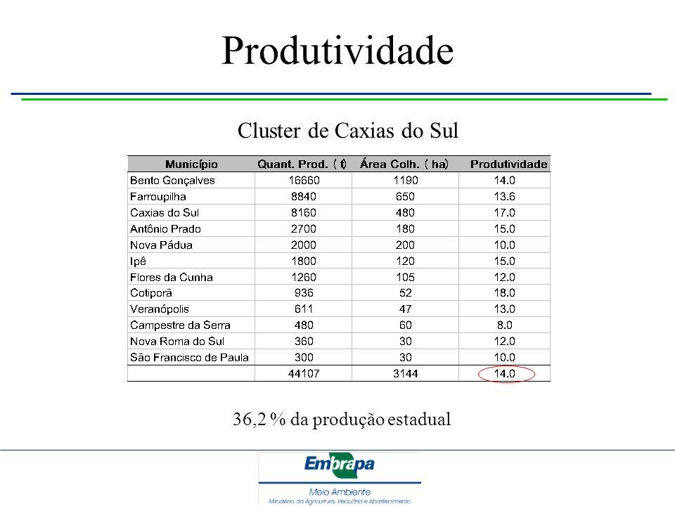 Produtividade Cluster de Caxias do Sul 36,2 % da produção estadual