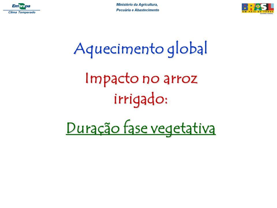 Impacto no arroz irrigado: Duração fase vegetativa