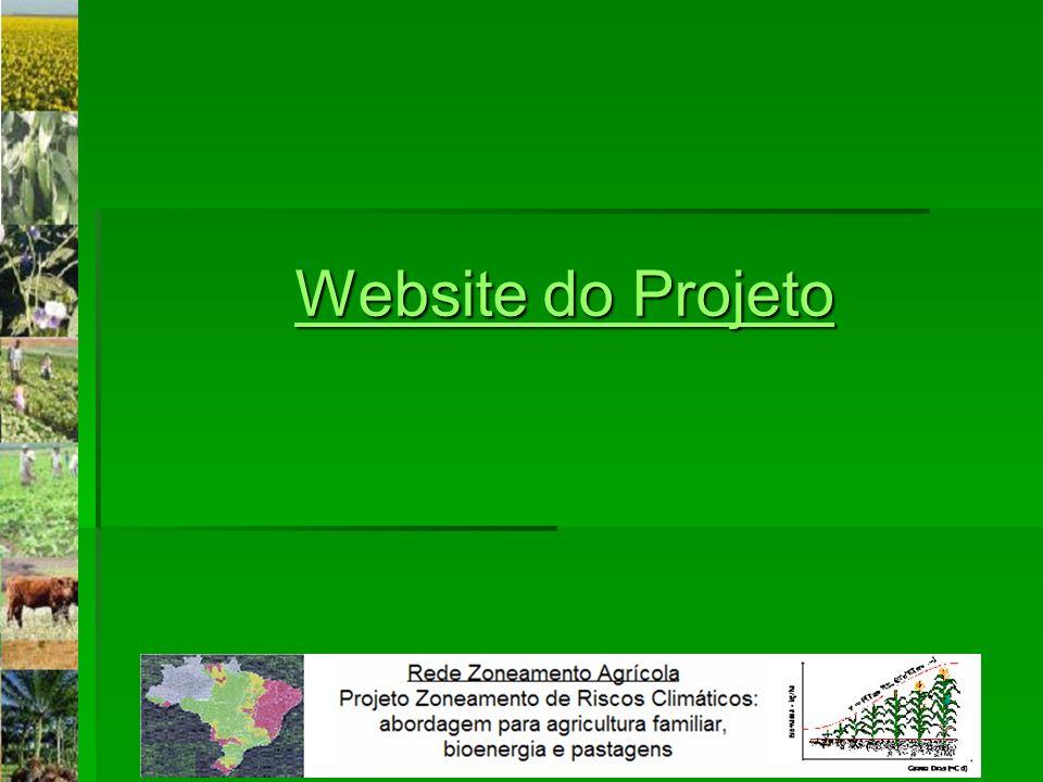 Website do Projeto