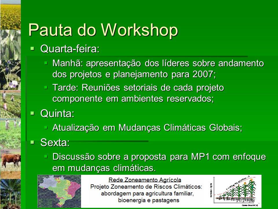 Pauta do Workshop Quarta-feira: Quinta: Sexta: