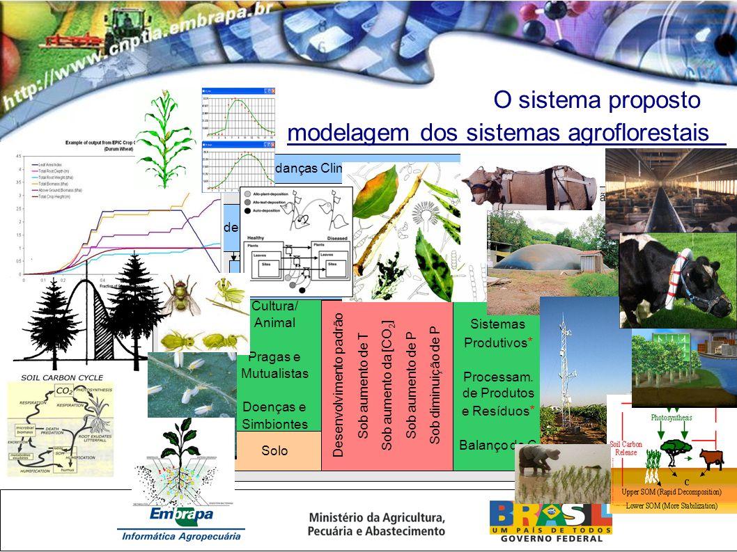 modelagem dos sistemas agroflorestais