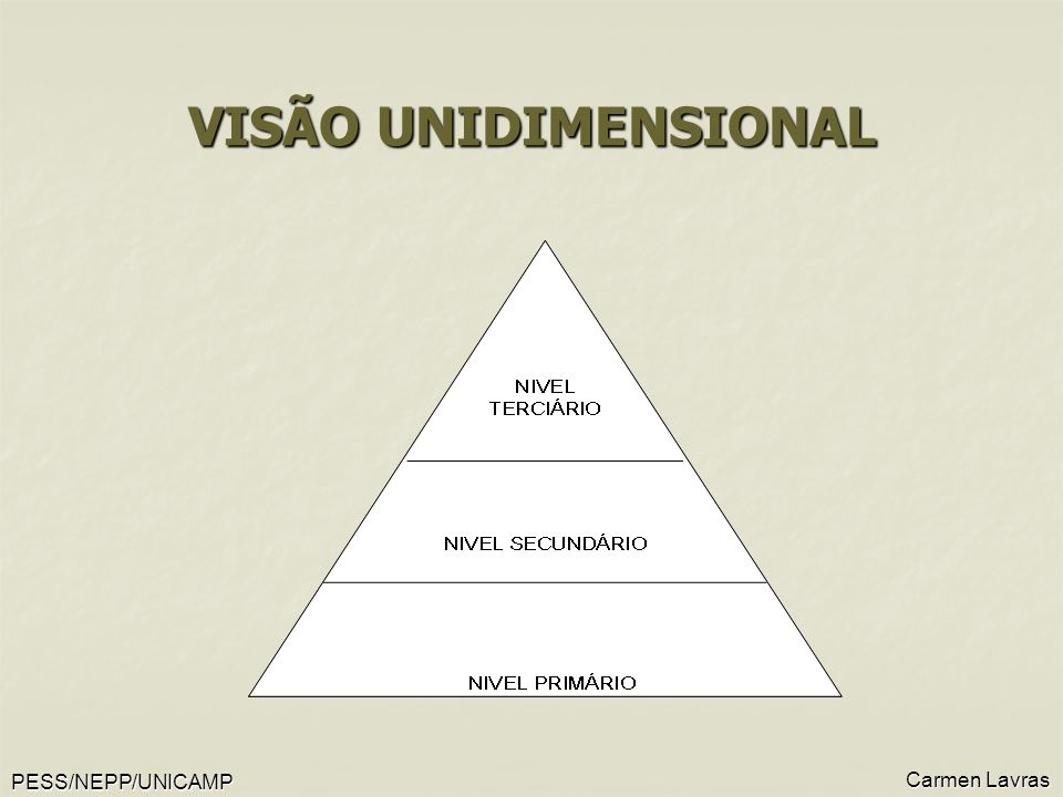 VISÃO UNIDIMENSIONAL Carmen Lavras PESS/NEPP/UNICAMP