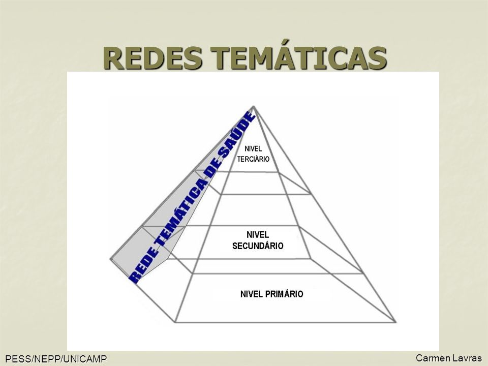 REDES TEMÁTICAS Carmen Lavras PESS/NEPP/UNICAMP