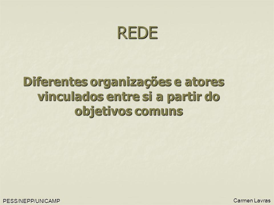 REDE Diferentes organizações e atores vinculados entre si a partir do objetivos comuns. Carmen Lavras.
