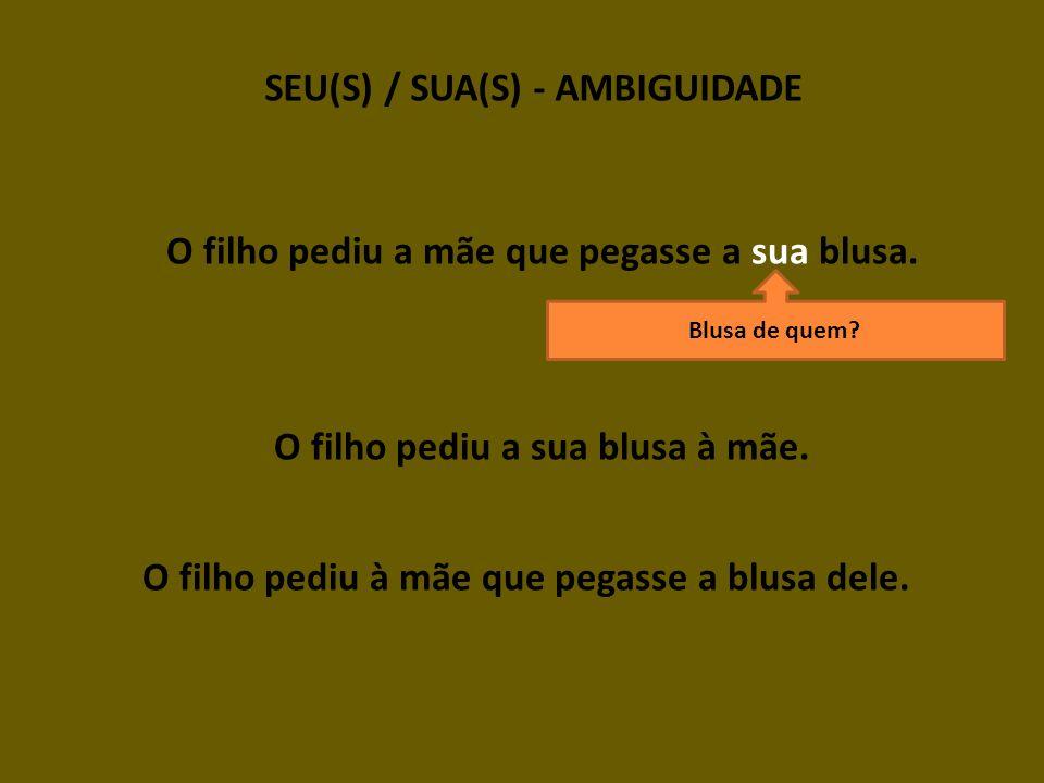 SEU(S) / SUA(S) - AMBIGUIDADE