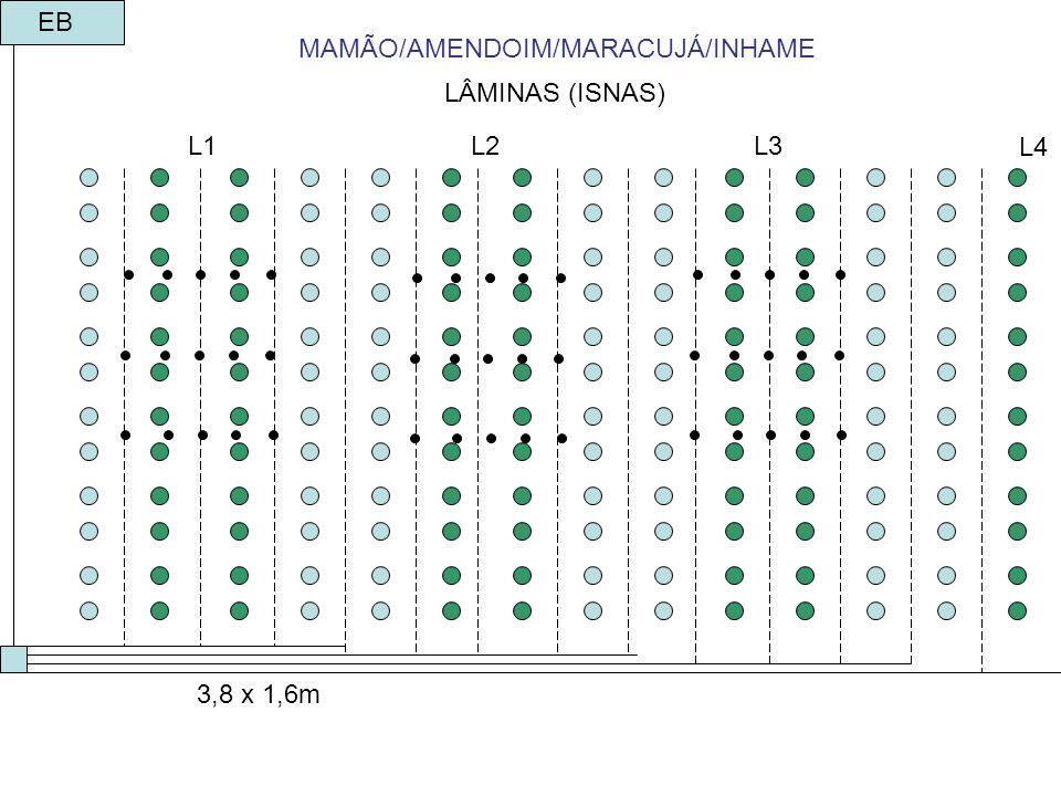 MAMÃO/AMENDOIM/MARACUJÁ/INHAME