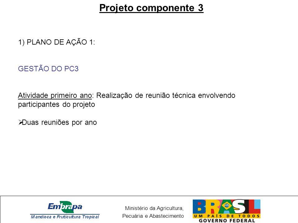 Projeto componente 3 1) PLANO DE AÇÃO 1: GESTÃO DO PC3