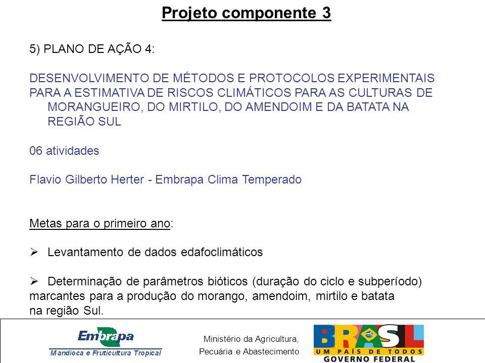 Projeto componente 3 5) PLANO DE AÇÃO 4: