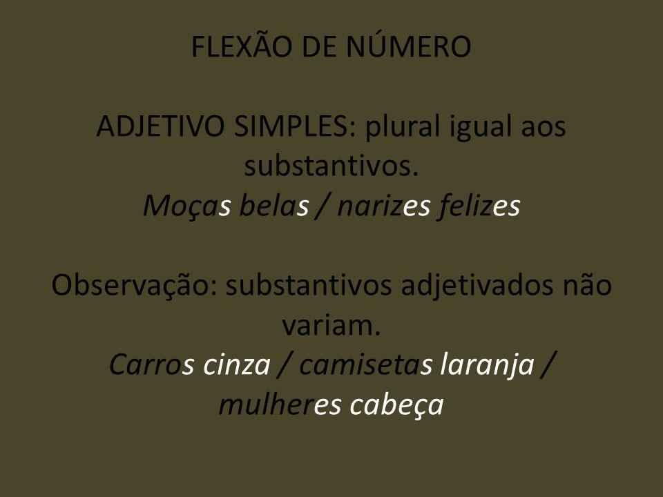 FLEXÃO DE NÚMERO ADJETIVO SIMPLES: plural igual aos substantivos