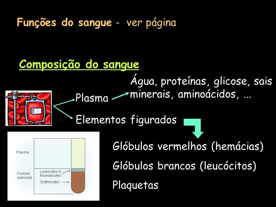 Composição do sangue Funções do sangue - ver página