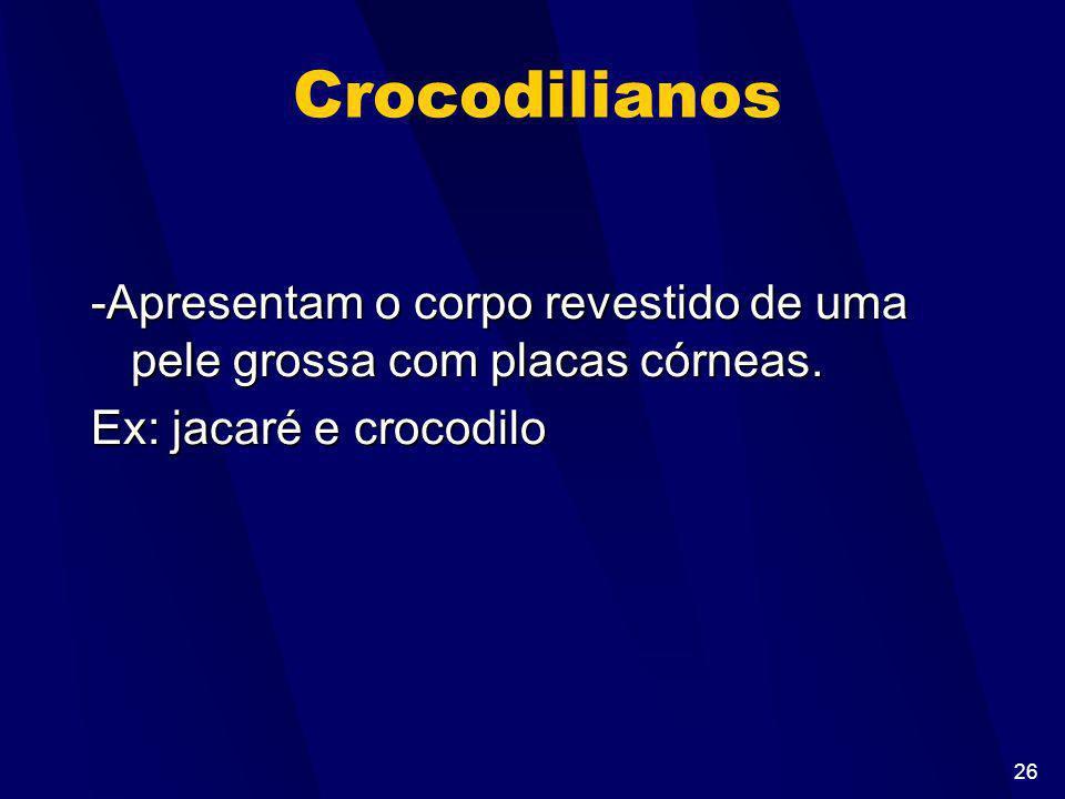 Crocodilianos -Apresentam o corpo revestido de uma pele grossa com placas córneas.