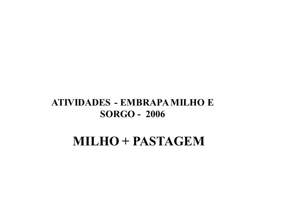 ATIVIDADES - EMBRAPA MILHO E SORGO - 2006