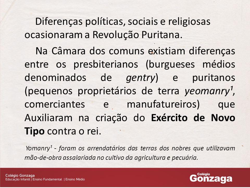 Diferenças políticas, sociais e religiosas ocasionaram a Revolução Puritana.