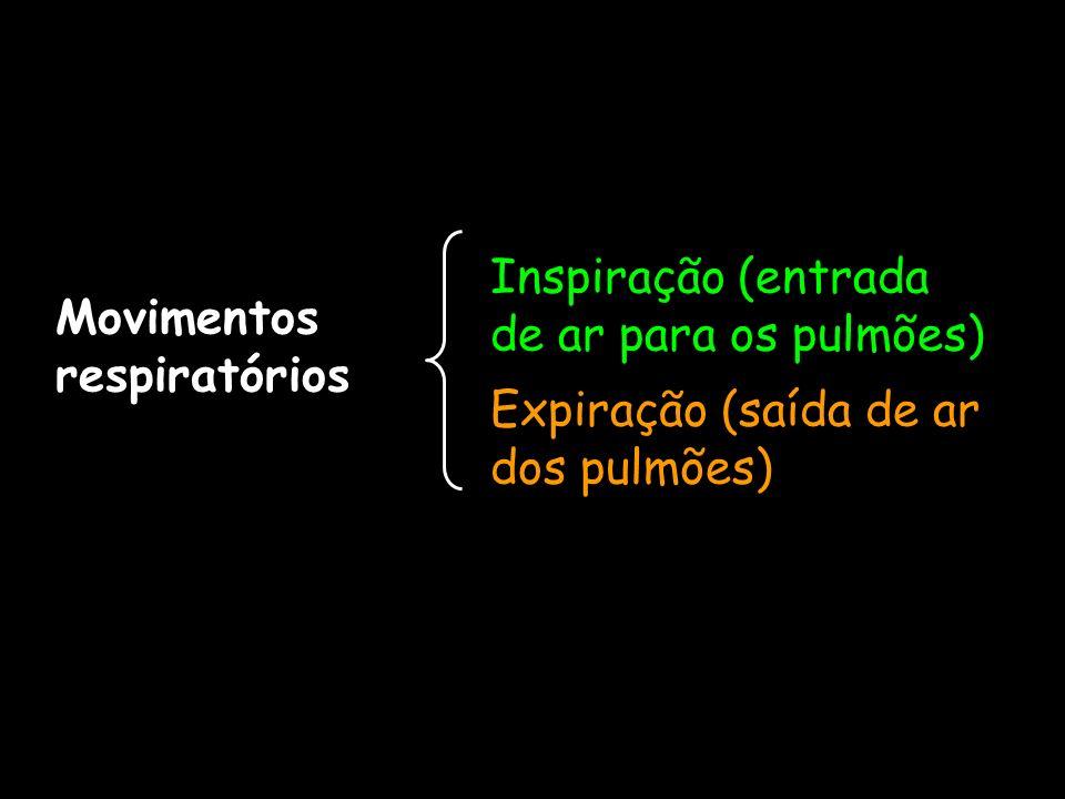 Movimentos respiratórios