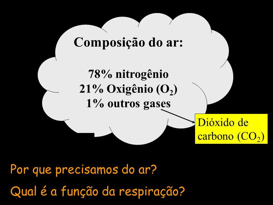 Composição do ar: 78% nitrogênio 21% Oxigênio (O2) 1% outros gases