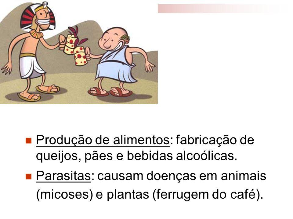 Produção de alimentos: fabricação de queijos, pães e bebidas alcoólicas.