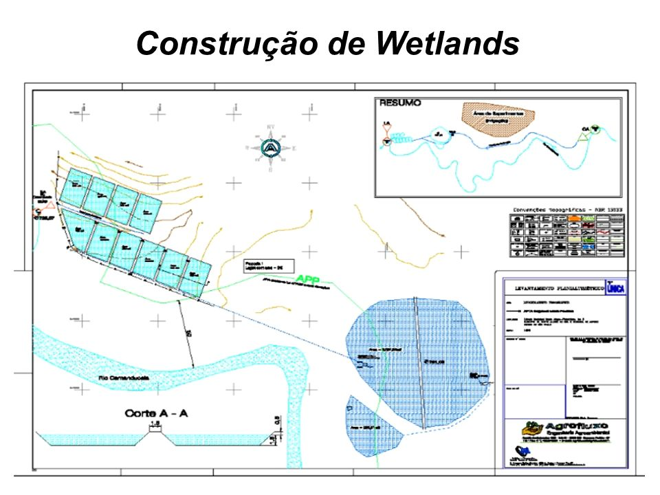 Construção de Wetlands