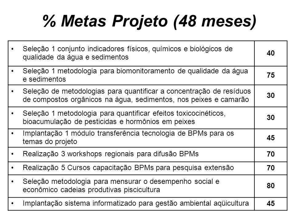 % Metas Projeto (48 meses)