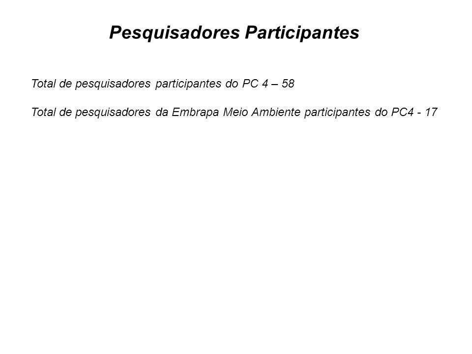 Pesquisadores Participantes
