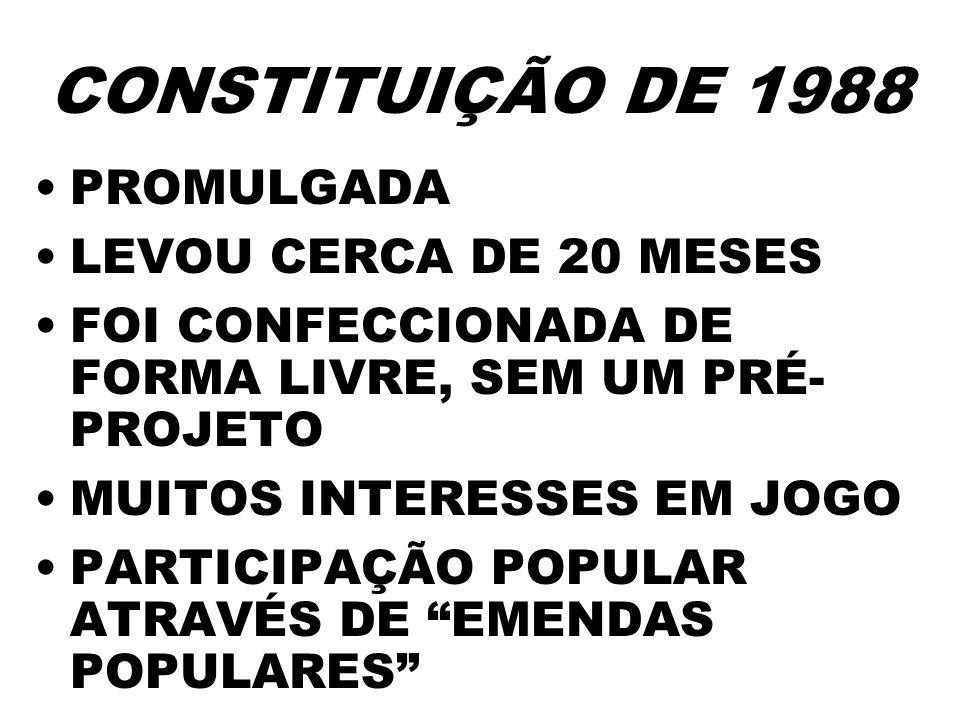 CONSTITUIÇÃO DE 1988 PROMULGADA LEVOU CERCA DE 20 MESES