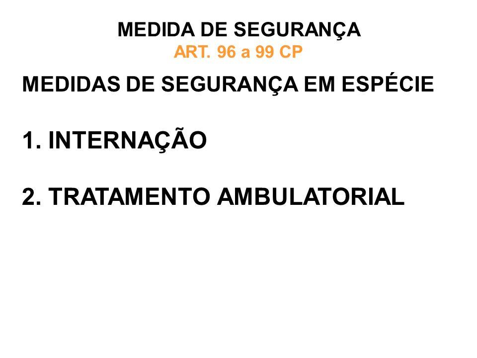 MEDIDAS DE SEGURANÇA EM ESPÉCIE