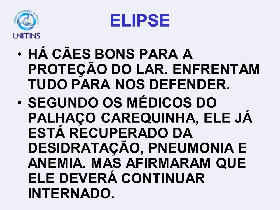 ELIPSE HÁ CÃES BONS PARA A PROTEÇÃO DO LAR. ENFRENTAM TUDO PARA NOS DEFENDER.