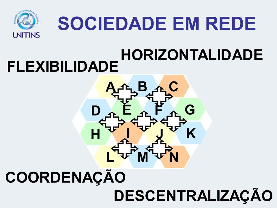 SOCIEDADE EM REDE HORIZONTALIDADE FLEXIBILIDADE COORDENAÇÃO