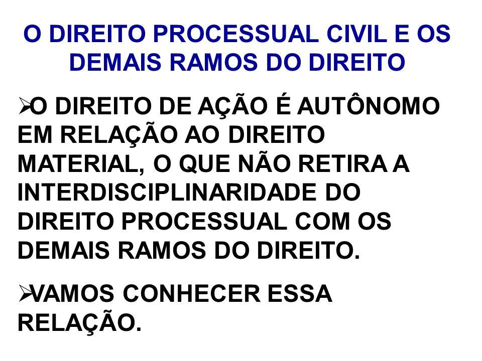 O DIREITO PROCESSUAL CIVIL E OS DEMAIS RAMOS DO DIREITO