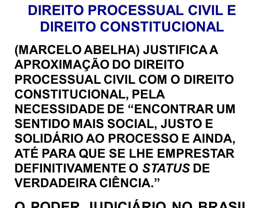 DIREITO PROCESSUAL CIVIL E DIREITO CONSTITUCIONAL
