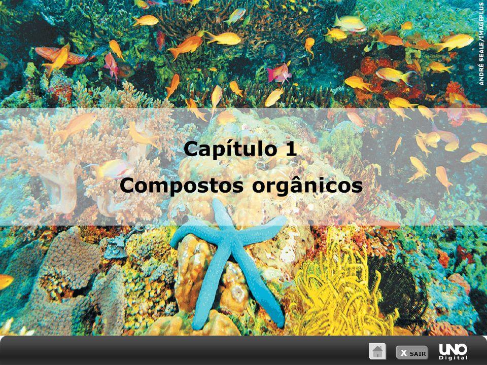 Capítulo 1 Compostos orgânicos