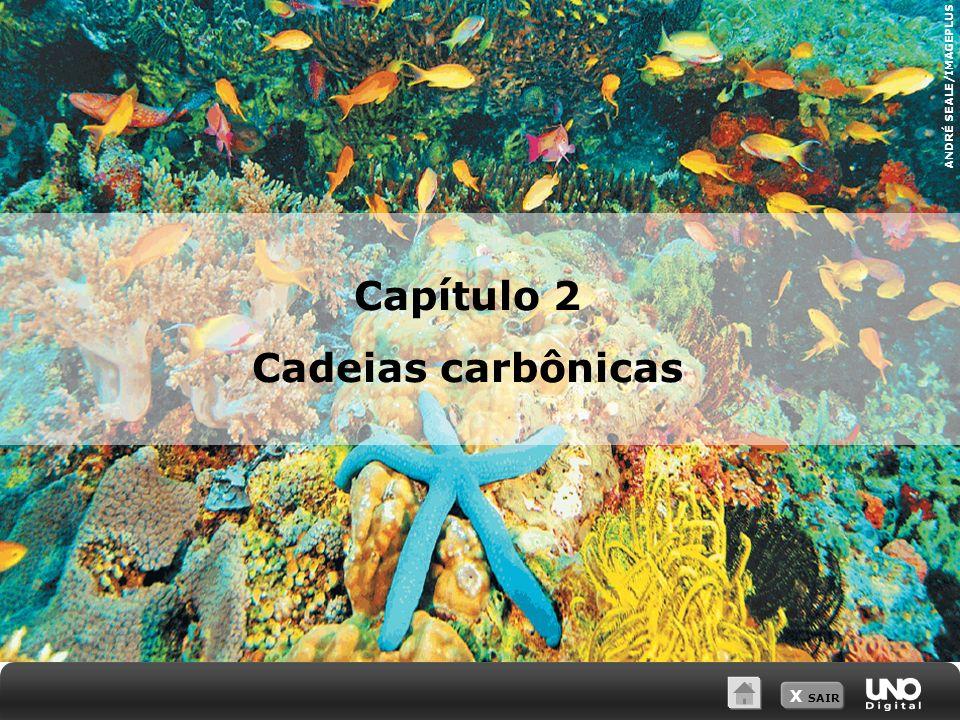 Capítulo 2 Cadeias carbônicas
