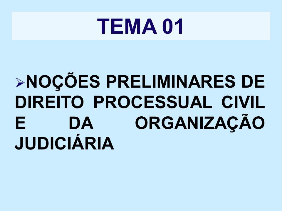 TEMA 01 NOÇÕES PRELIMINARES DE DIREITO PROCESSUAL CIVIL E DA ORGANIZAÇÃO JUDICIÁRIA