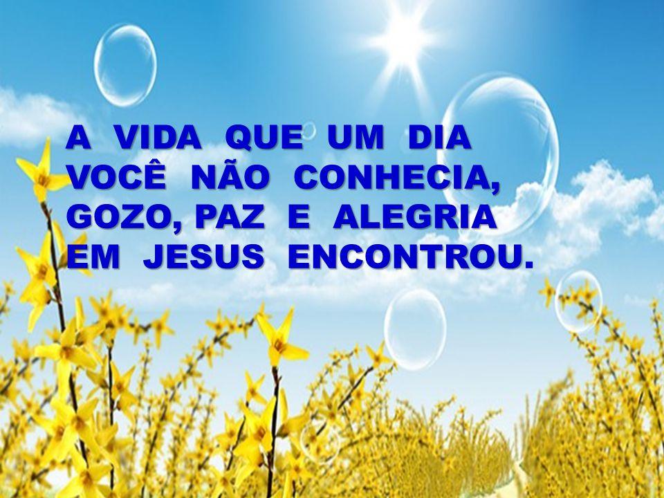 A VIDA QUE UM DIA VOCÊ NÃO CONHECIA, GOZO, PAZ E ALEGRIA EM JESUS ENCONTROU.