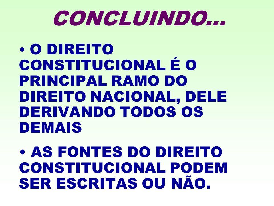 CONCLUINDO... O DIREITO CONSTITUCIONAL É O PRINCIPAL RAMO DO DIREITO NACIONAL, DELE DERIVANDO TODOS OS DEMAIS.