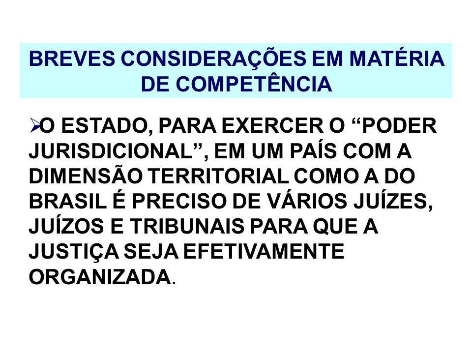 BREVES CONSIDERAÇÕES EM MATÉRIA DE COMPETÊNCIA