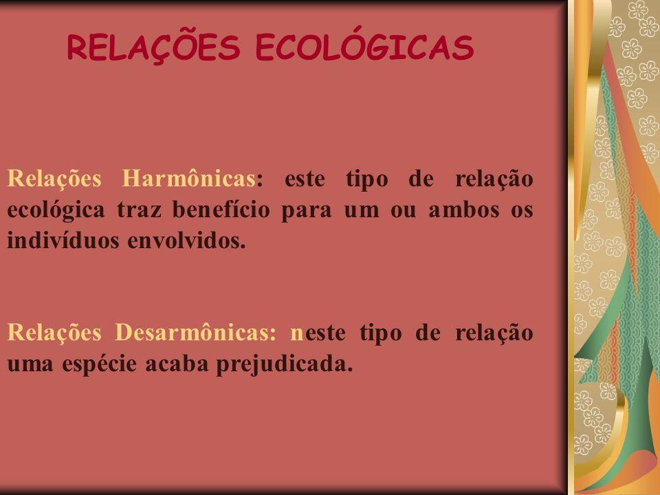 RELAÇÕES ECOLÓGICAS Relações Harmônicas: este tipo de relação ecológica traz benefício para um ou ambos os indivíduos envolvidos.