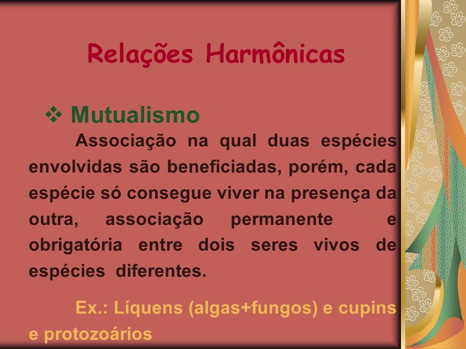 Relações Harmônicas Mutualismo