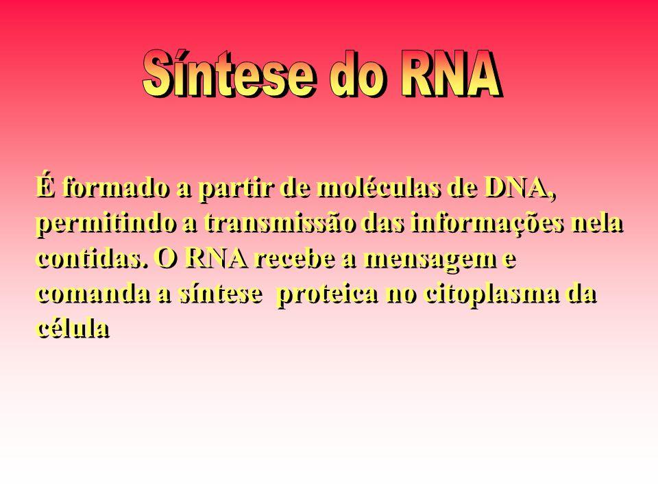 Síntese do RNA