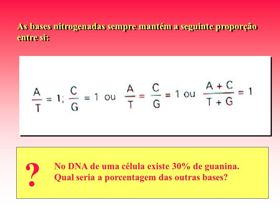 As bases nitrogenadas sempre mantém a seguinte proporção entre si: