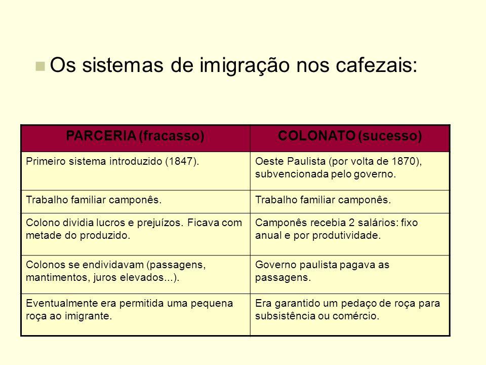 Os sistemas de imigração nos cafezais: