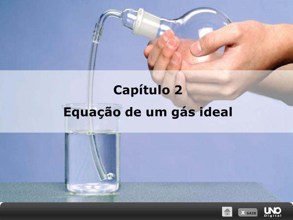 Capítulo 2 Equação de um gás ideal