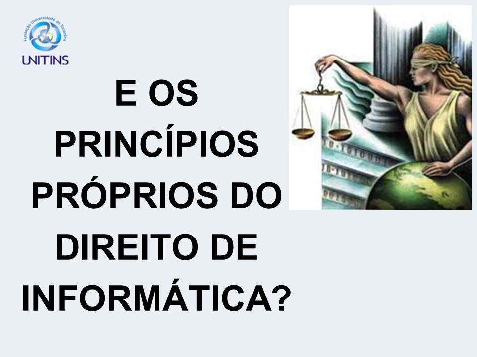 E OS PRINCÍPIOS PRÓPRIOS DO DIREITO DE INFORMÁTICA
