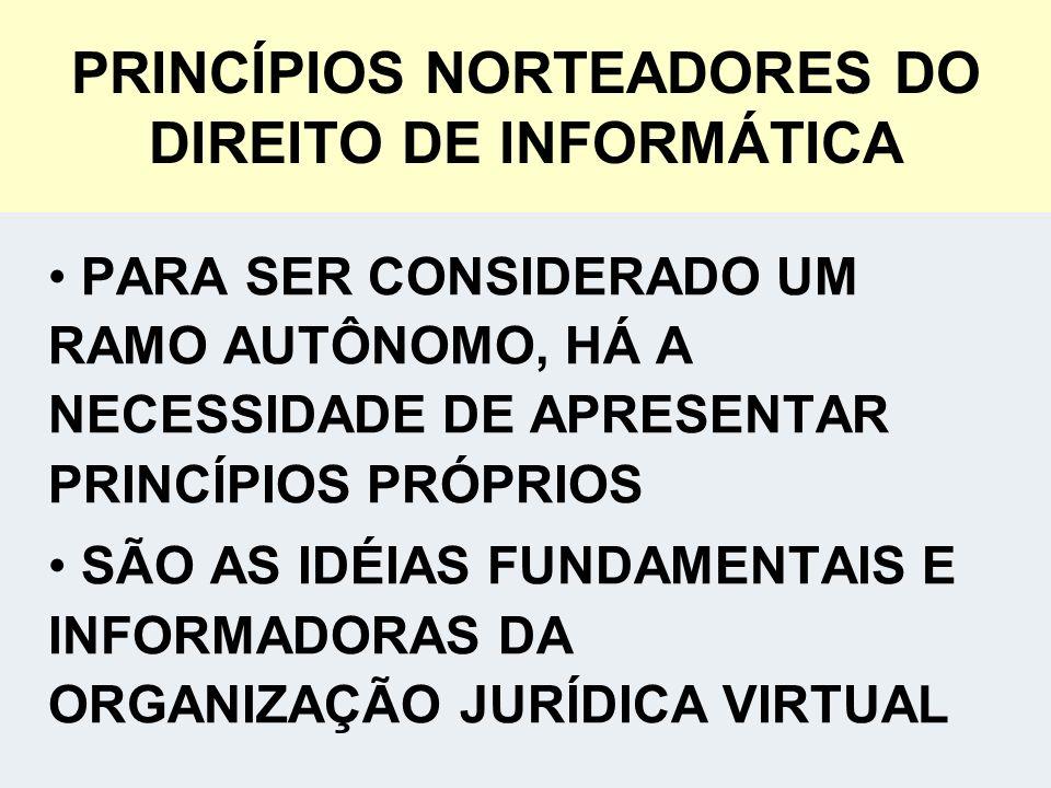 PRINCÍPIOS NORTEADORES DO DIREITO DE INFORMÁTICA
