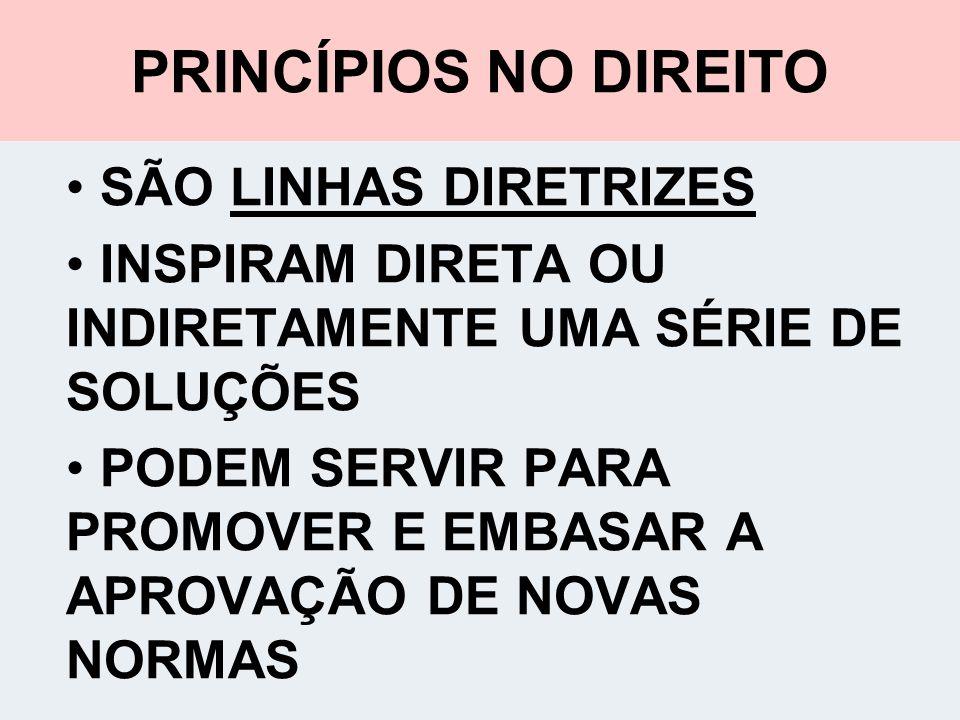 PRINCÍPIOS NO DIREITO SÃO LINHAS DIRETRIZES
