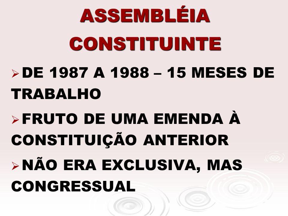 ASSEMBLÉIA CONSTITUINTE